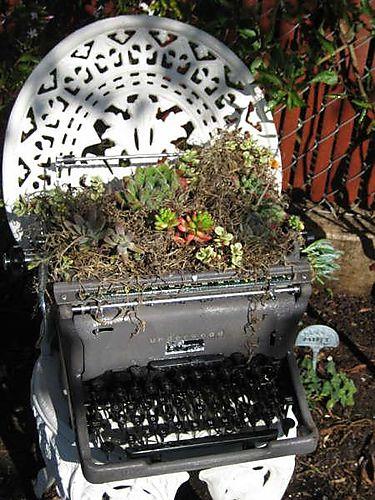 Cactiwriter001[1]