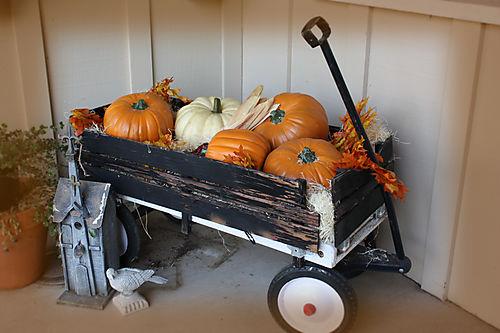 Wagon 008