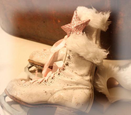 Ice skates 012