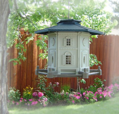 2 dollar bird feeder
