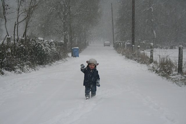 Jonah in snow!