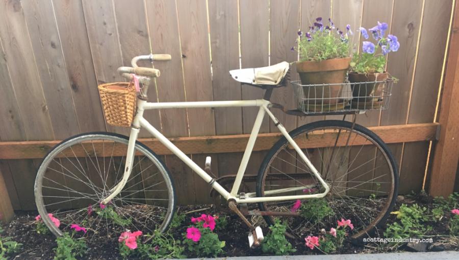 backyard bike