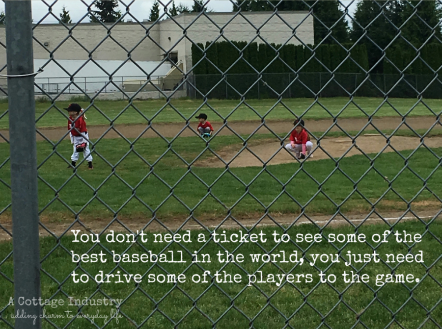 T ball rules!