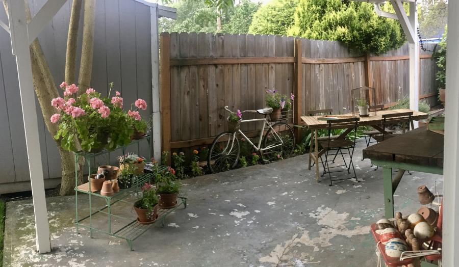 Back patio 1