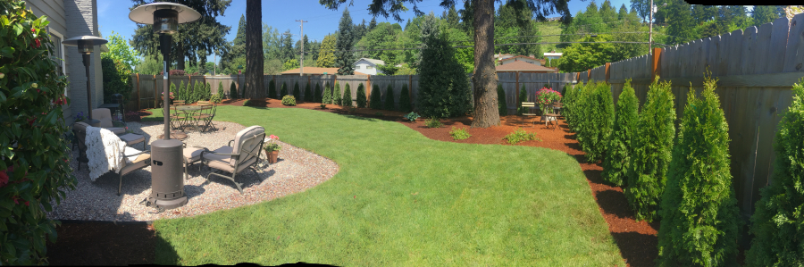 Backyard after with furniture