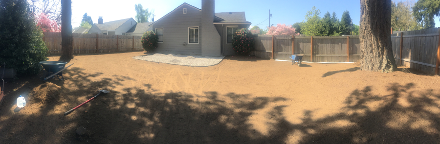 What a big backyard