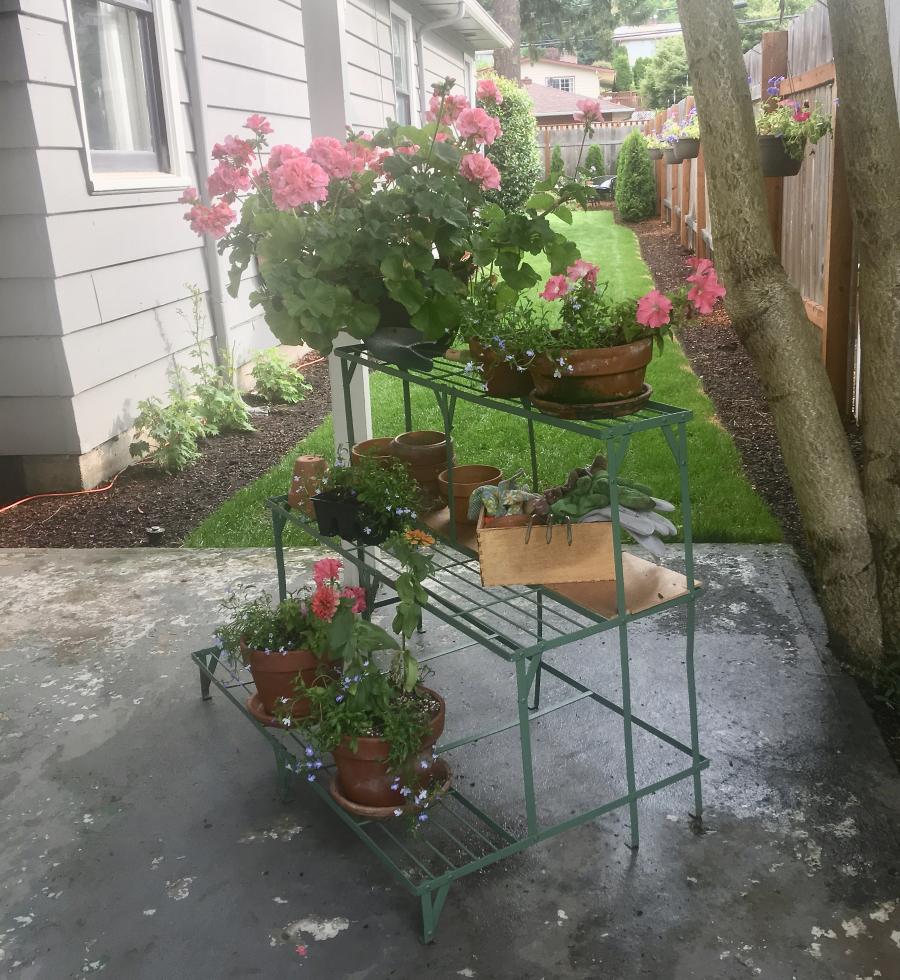 Back patio 11