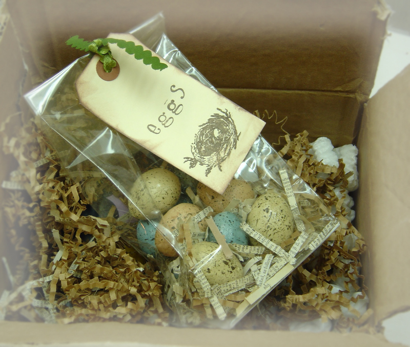 A_pop_and_ivy_egg_box