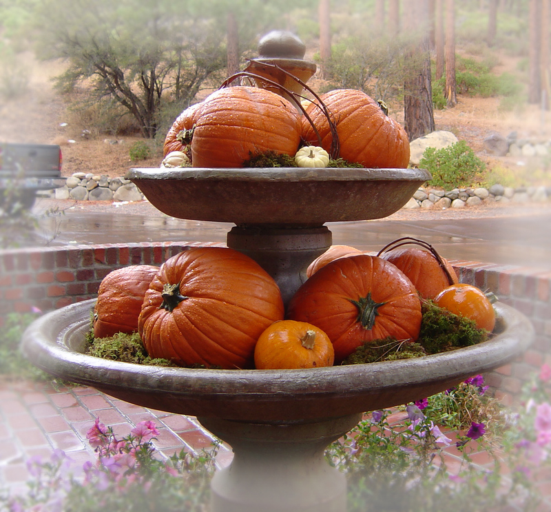 A_aapumpkin_fountain_2