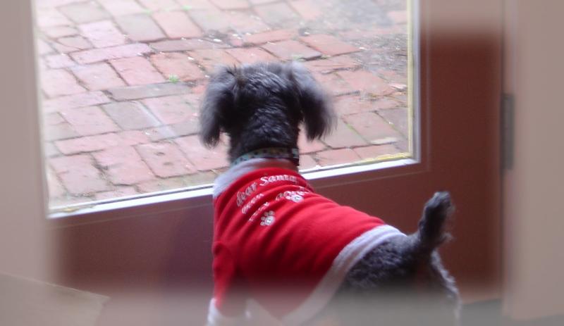 Aaaa_waiting_for_santa