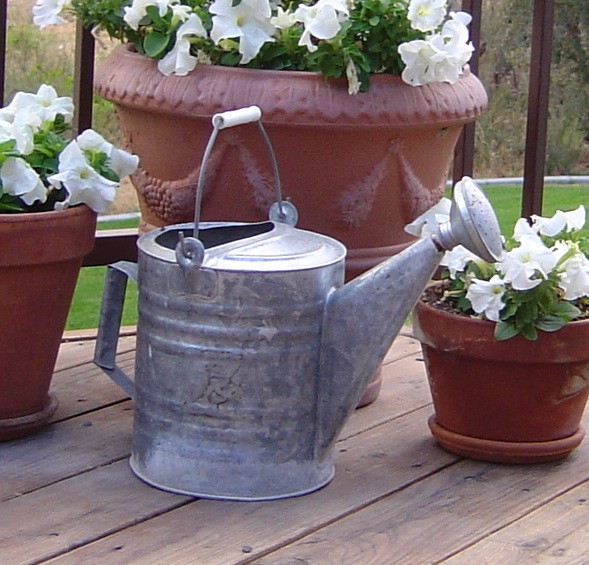 Aaawatering_can_007_1