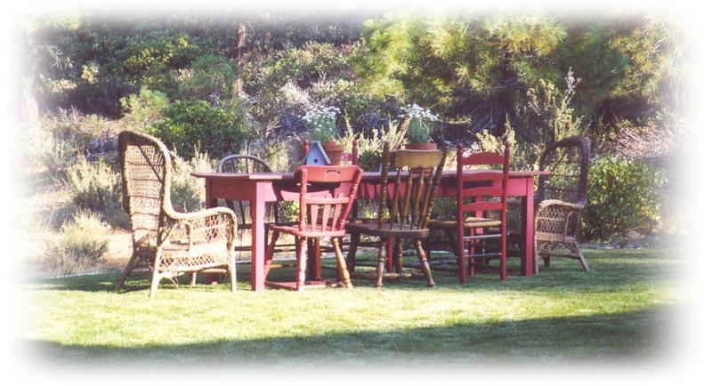 Backyard_country_picnic_1
